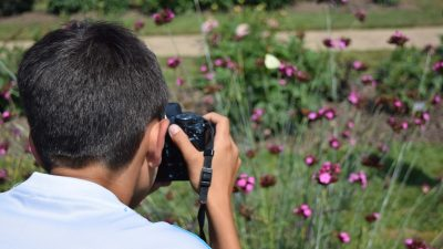 How To Learn Photography Online