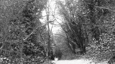 Winning Shots For Wonderful Winter Landscapes