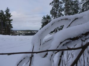 Landscape photography winter