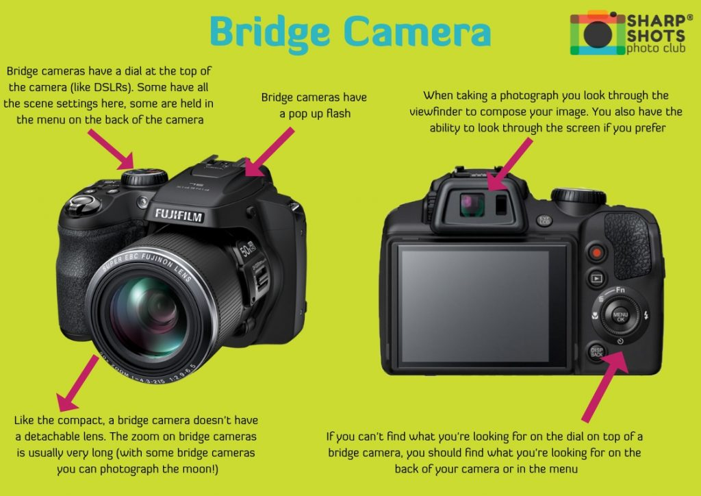 What is a Bridge camera, mirrorless camera, compact camera, DSLR camera, best camera for children, best camera for teenager, sharp shots photo club