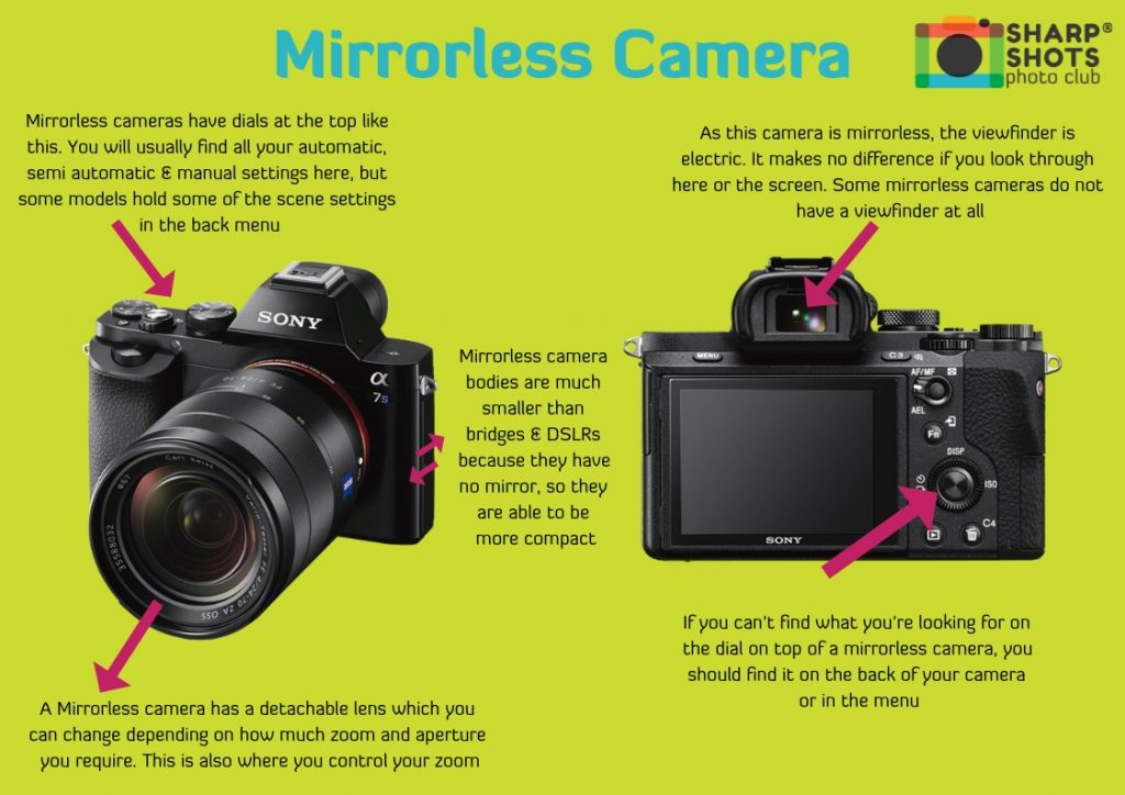 What is a Mirrorless camera, compact camera, bridge camera, DSLR camera, best camera for children, best camera for teenager, sharp shots photo club