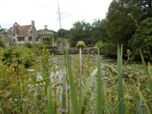 Scotney Castle through the grass on kids photography course
