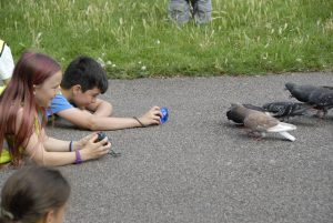 Children photographing pigeons in London