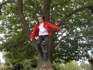 Having fun jumping from tree stumps at after school club