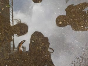Reflection photograph in a puddle