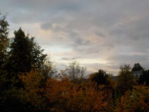 Autumnal landscape photograph taken by a child at school