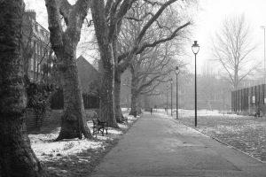Street on a foggy day
